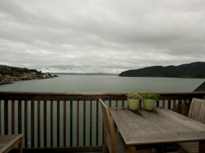 View from dinning deck off living room